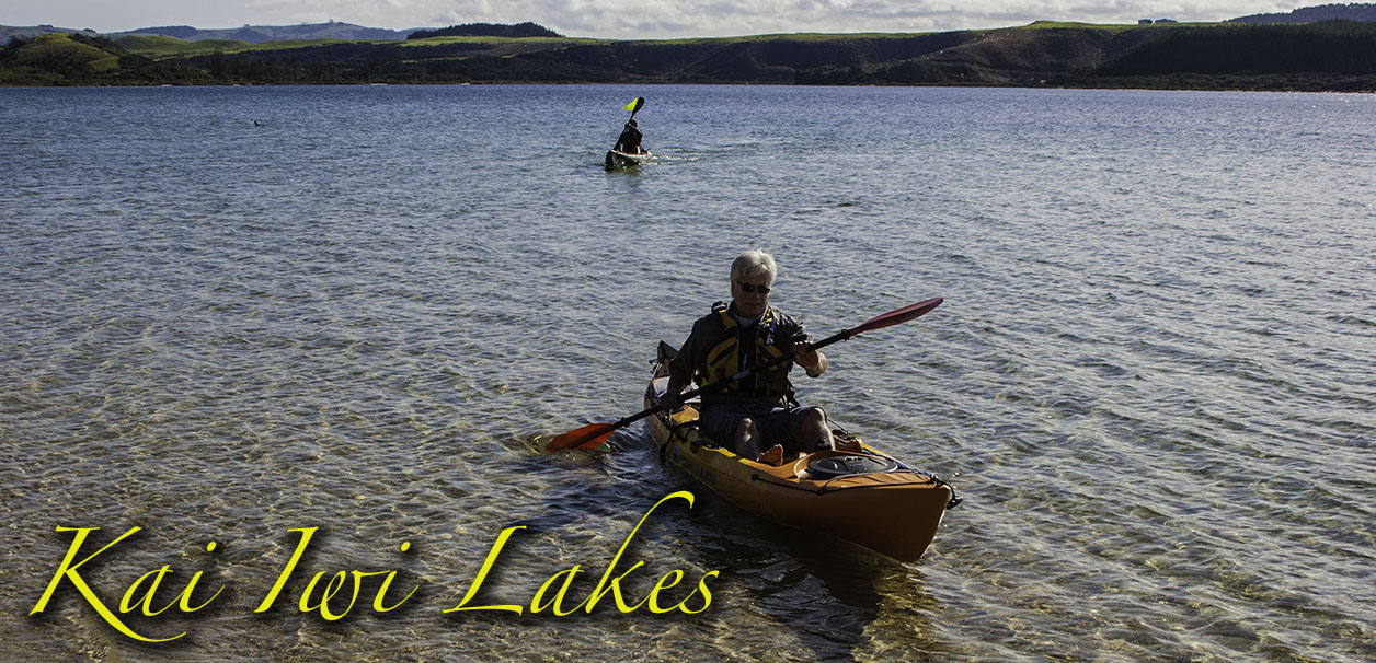 Kai Iwi Lakes in the Kauri Coast, Northland, New Zealand